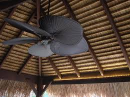 Outdoor Ceiling Fans Perth by Beacon Lighting Lights Fans Globes Australia U0027s Largest