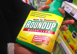 Monsantos Roundup Linked To Fatty Liver Disease