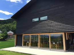 100 Contemporary House Siding What Are The Pros And Cons Of A Modern Black ShizenStyle