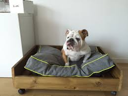 repulsif chien pour canapé magnifique repulsif chien canapé meubles 36 inspirant design