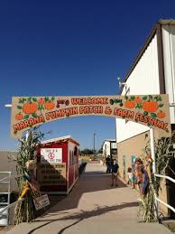 Pumpkin Patch Glendale Co by Don U0027t Miss These 10 Great Pumpkin Patches In Arizona This Fall
