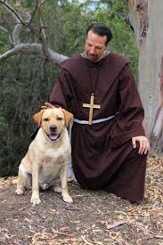 san diego community news why bless the animals on st