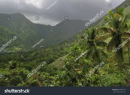 100 J Mountain St Lucia Tropical Forest Ock Photo Edit Now 209350345 Shutterstock