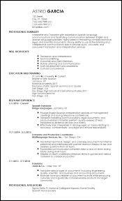 Entry Level Resume Translator
