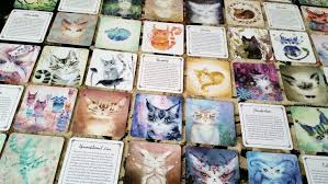 cats on deck spirit cats oracle deck by piar benebell wen