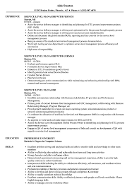 Download Service Level Manager Resume Sample As Image File