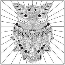 Color With Music Owls Of The Night Adult Coloring Book Blank Page