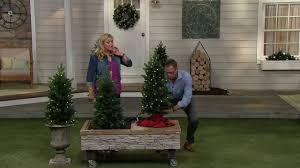 Qvc Pre Lit Christmas Trees by Bethlehem Lights 40