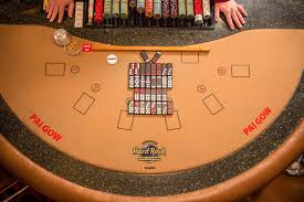 Learn e of the Most Exotic Games at Seminole Hard Rock Tampa