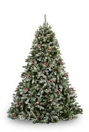 Frasier Christmas Tree by Pre Lit Christmas Trees Wintergreen Corporation