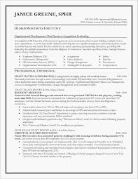 40 Resume Professional Summary Examples | Stockportcountytrust