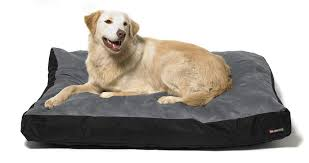 Burrowing Dog Bed by How To Clean A Large Dog Bed Washabledogbed Net