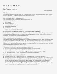 Leadership Resume Words Interesting Skills On Examples For Team Leader Of Sufficient Accordingly