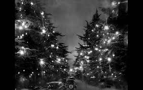 Christmas Tree Lane PHOTO BY Los Angeles Times