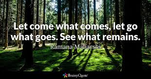 Let Come What Comes Go Goes See Remains