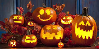 Grants Farm Halloween Events 2017 by Lakeland Fall U0026 Halloween Guide Pumpkin Patches Corn Mazes