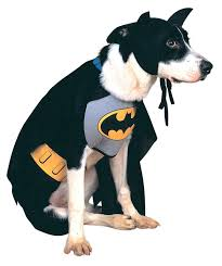 cat batman costume 9 costumes for dogs cat and other pet