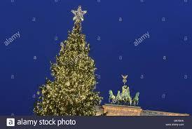 Ge 75 Ft Christmas Trees by Norwegian Fir Christmas Tree Christmas Lights Decoration