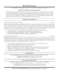 Sample Of Sales Manager Resume Plus Examples This Is Director