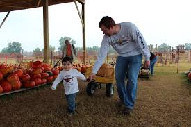 Schaefers Pumpkin Patch by Veselyfamilyadventures 4 Out Of 5 Dentists Recommend This
