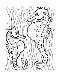 Printable Pictures Seahorse Coloring Page 92 For Print With