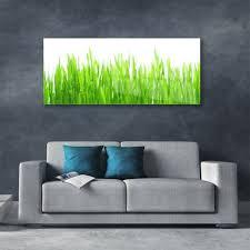 wandbilder glasbilder druck auf glas 125x50 gras natur bilder