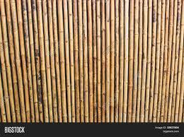 100 Bamboo Walls Image Photo Free Trial Bigstock