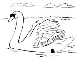Free Coloring Pages And Reference Pictures