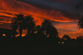 Sky Photograph California Palm Trees Sunset Portfolio Artists On Tumblr Vsco Film Photographers