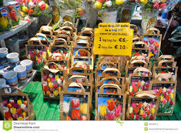 tulip bulbs for sale editorial stock photo image of credit 28549313