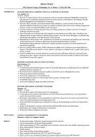 Download Support Engineer Senior Resume Sample As Image File