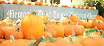 Free Pumpkin Patch In Katy Tx by Pumpkins Memorial Drive United Methodist Church