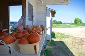 Pumpkin Patch Fresno Ca First News by Snead U0027s Farm A Sustainable Family Farm Near Fredericksburg Va