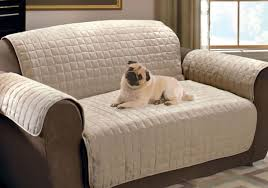 Sure Fit Sofa Slipcovers Uk by Sofa Dog Sofa Covers Satiating Dog Couch Covers Australia