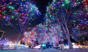 Zoo Lights Tickets Now On Sale - Denver Zoo