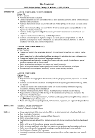 Animal Caretaker Resume Samples | Velvet Jobs 23 Elderly Caregiver Resume Biznesasistentcom Part 3 Format Examples By Real People Home 16 Resume Examples For Caregiver Skills Auterive31com Skill Samples Best Sample Free Child Templates For Assistant No Experience Inspirational How To Write A Perfect Health Aide Rumeples Older Workers Of Good Rumes Valid 10 Assisted Living Letter
