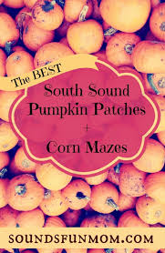 Hunter Farms Pumpkin Patch Olympia Wa by South Puget Sound Pumpkin Patch And Corn Maze List