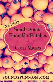 Pumpkin Patch Puyallup River Road by South Puget Sound Pumpkin Patch And Corn Maze List