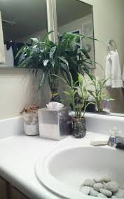 Mobile Self Contained Portable Electric Sink by Best 25 Hair Washing Sink Ideas On Pinterest Bathroom Sink
