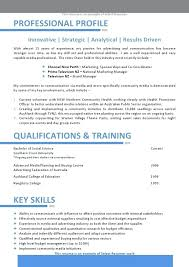Project Management Resume Doc It Manager Telecom Cv