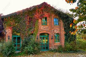 100 Rustic House Strong Green Facade Of A With Windows In Wooden Stock