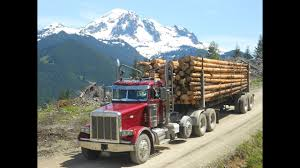 Peterbilt Logger On Steep Mt. ZBW Logging And Tellefsen Trucking LLC ... Mt Garfield Trucking About Us Lunderby Llc June 2 Butte Mtcokeville Wy Beam Bros Crawford Va Rays Truck Photos 24 Missoula To Cut Bank Mt Jim Palmer On Twitter Whoever Said That Vans Arent Cool Billings Towing 406 2482801 Repair I90 Montana Part 5 Dead Dozens Hurt When School Bus Collides With Dump Truck In Home Mtpleasanttrfcom Accessible Baker Transportation Seattlegov