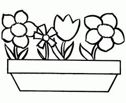 Flower File Name 0 Resolution 1025x837 Ratio 119 Size 222 KB Type Image Jpeg