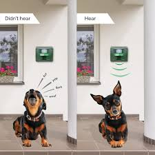 Do Miniature Doberman Pinschers Shed by Amazon Com Aspectek All In One Animal Pets Repeller U0026 Dog Bark