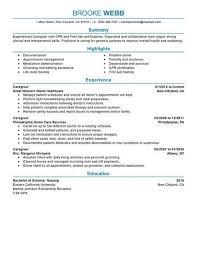 Caregiver Healthcare Resume Example Professional 2 463x600