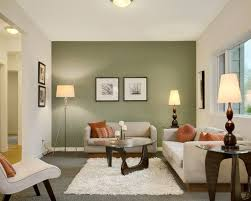 Wonderful Sage Green Living Room Ideas Contemporary With Terra Cotta And Wall Plus White Fur Rug Cream Color Sofa Frashii