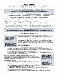 Sample Resume For Information Technology Assistant Valid Resumes Executives Template