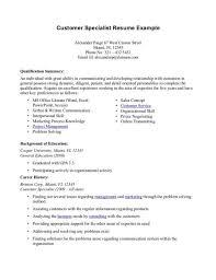 Professional Summary Resume Examples Customer Service Rn Cv Sample Free Samples