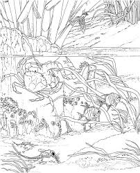 Adult Seascape Coloring Pages Printable