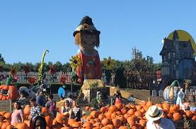 Pumpkin Picking Near Lancaster Pa by Fun Things To Do With Kids In Chester County